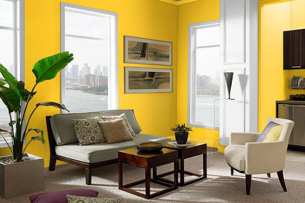 nội thất màu vàng